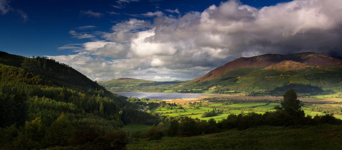 Bassenthwaite Lake & Dodd Hill from Whinlatter Pass, Lake District
